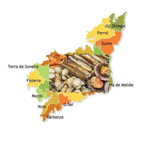 recetas tradicionales provincia coruña