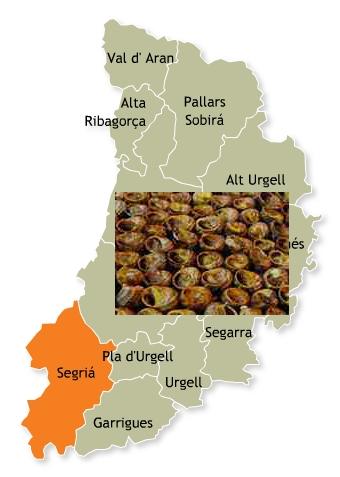 recetas tradicionales provincia lerida